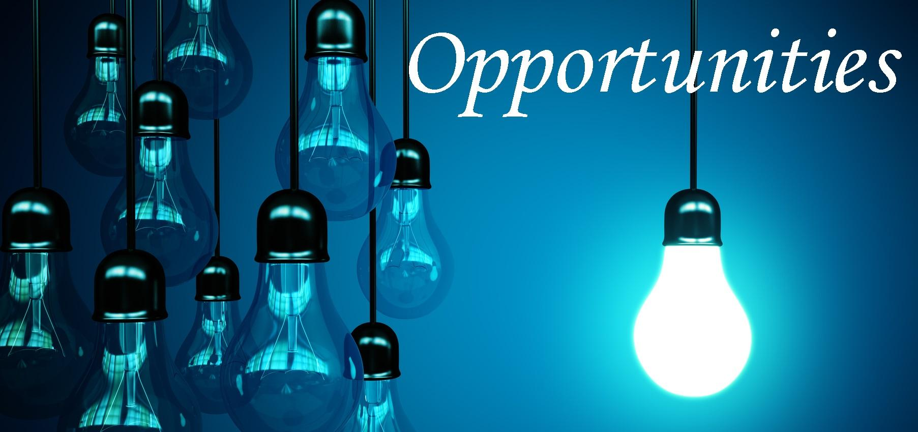 business-opportunity1